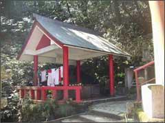 大根地神社の湧き水