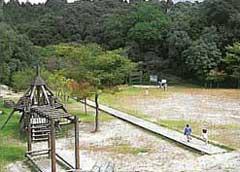 四王寺県民の森2