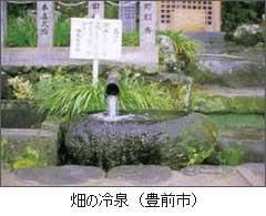 畑の冷泉(湧水)