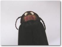 マドボタル頭部写真
