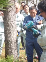 樹幹注入の説明2