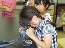 顕微鏡観察1